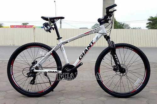 Một đáp án cho câu hỏi nên mua xe đạp thể thao hãng nào chính là Giant