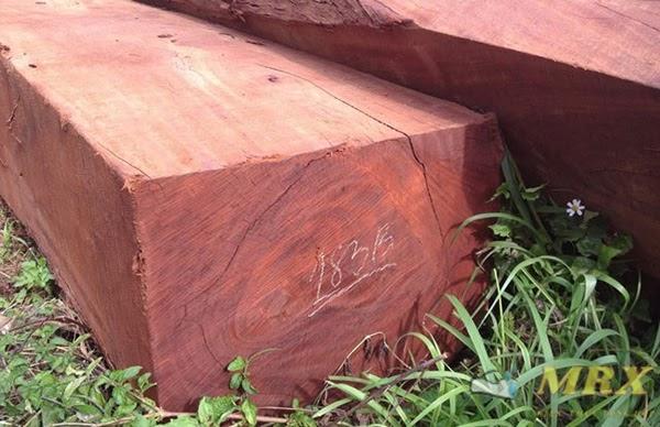 gỗ hương loại nào tốt
