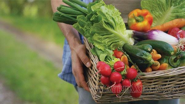 Mẹ bầu không nên ăn rau củ chưa được rửa sạch
