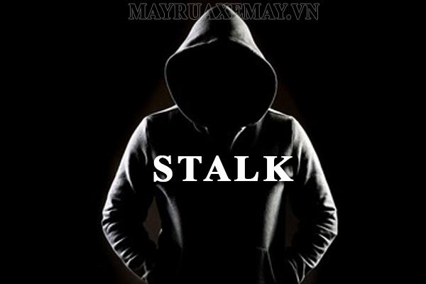 """Stalk là gì? NYC là gì? Những điều bạn cần biết về """"Stalk"""" và """"NYC"""""""