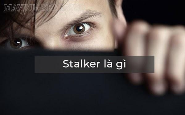 stalker là gì