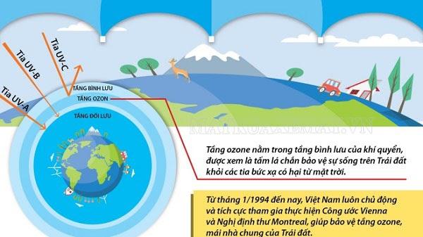 vai trò của tầng ozon đối với trái đất