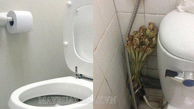Đặt sả đập dập trong nhà vệ sinh để hút mùi