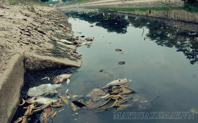 ô nhiễm nguồn nước tại việt nam